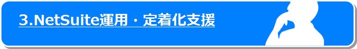 Netsuite運用・定着化支援